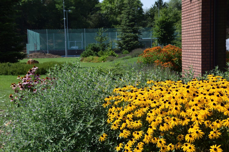 Zahrada - projekce, údržba, realizace