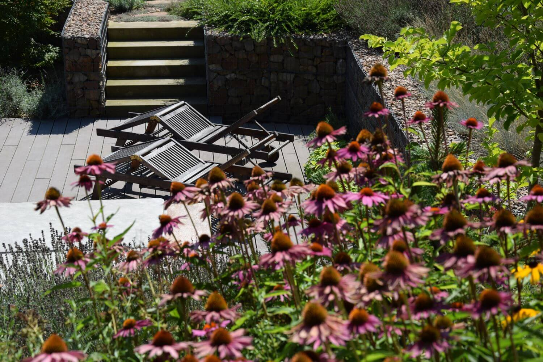 projekce zahrad